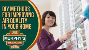 DIY Methods for Improving Air Quality in Your Home